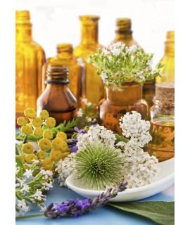 Набор (мастер-нос + мастер-горло+оксолиновая мазь+ пертуссин + лекарственные травы (3 на выбор)+хлоргексидин)